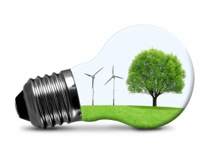 Renewable Choices: International Markets