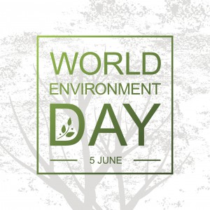Preserve and Enhance Natural Capital: World Environment Day